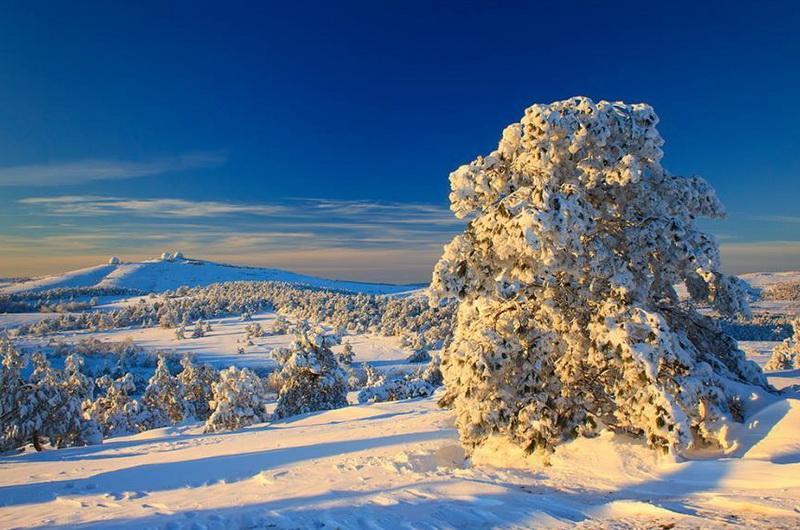 Ай-Петри зимой