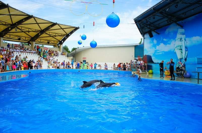 Дельфинарий в Анапе