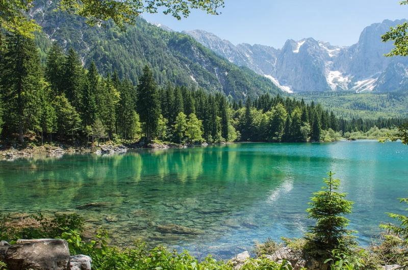 фото на отдых на природе