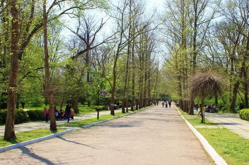 Саки. Городской парк